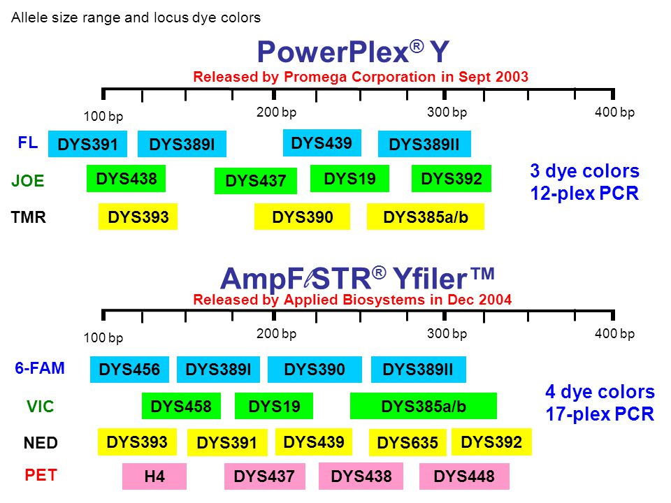 PowerPlex® Y AmpFlSTR® Yfiler™ 3 dye colors 12-plex PCR 4 dye colors