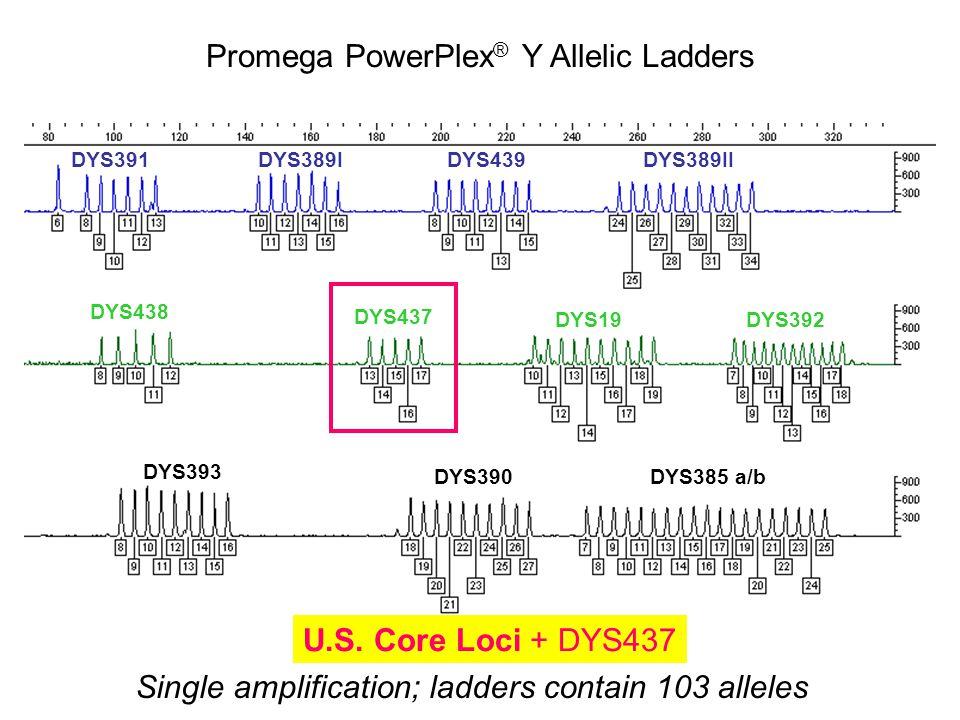 Promega PowerPlex® Y Allelic Ladders