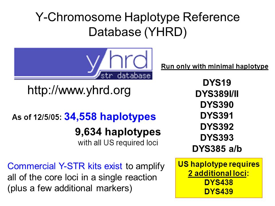 Y-Chromosome Haplotype Reference Database (YHRD)