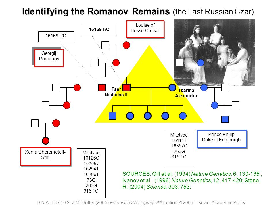 Identifying the Romanov Remains (the Last Russian Czar)