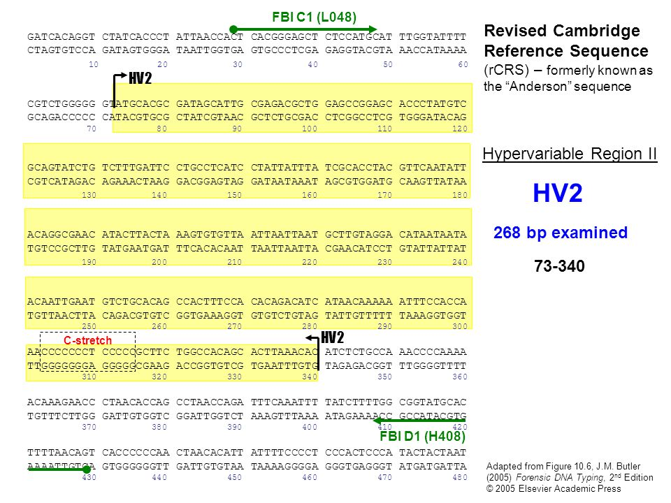 FBI C1 (L048) Revised Cambridge Reference Sequence (rCRS) – formerly known as the Anderson sequence.
