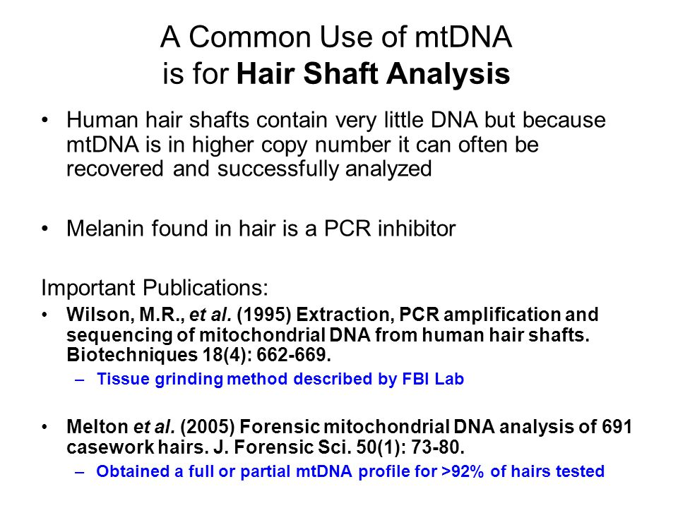 A Common Use of mtDNA is for Hair Shaft Analysis