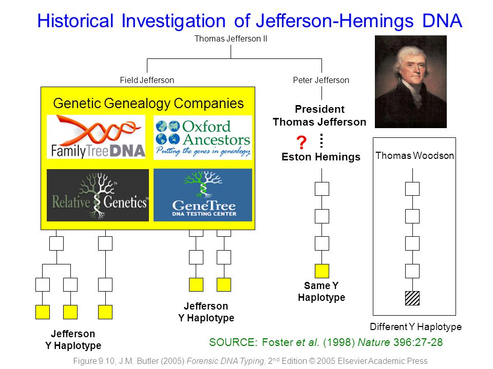 Historical Investigation of Jefferson-Hemings DNA