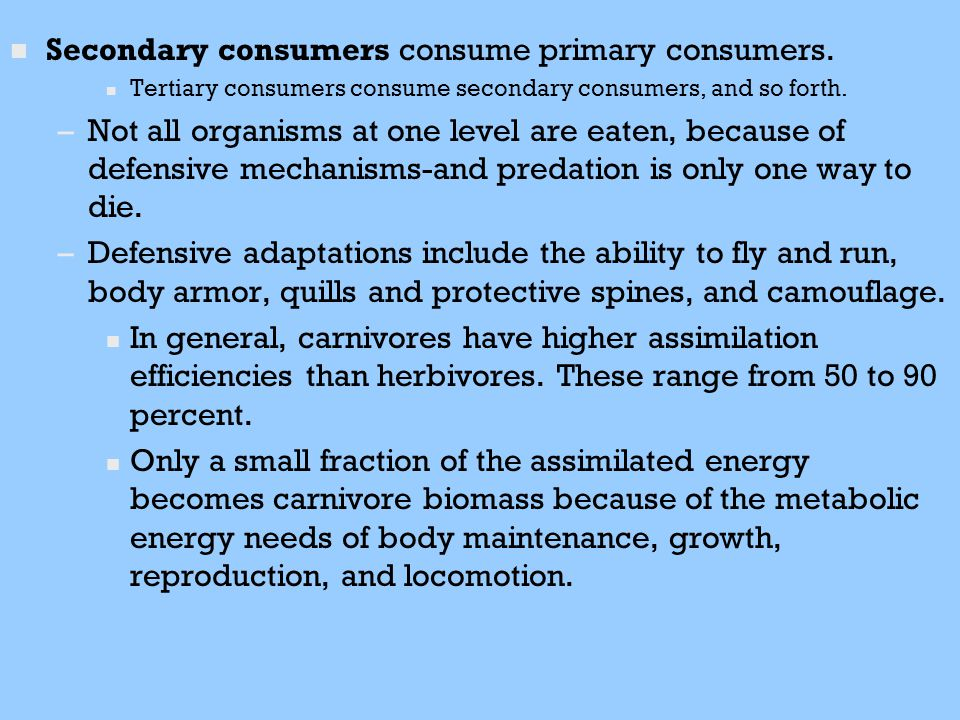 Secondary consumers consume primary consumers.