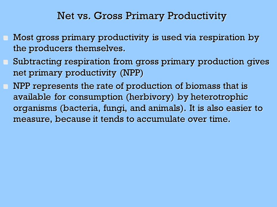 Net vs. Gross Primary Productivity