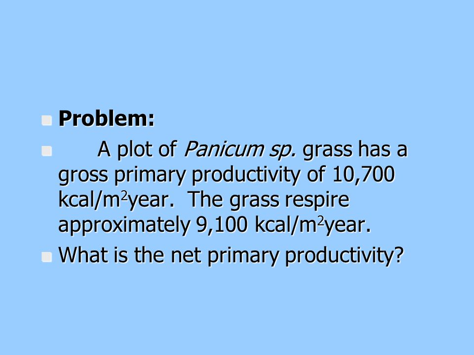 Problem: A plot of Panicum sp. grass has a gross primary productivity of 10,700 kcal/m2year. The grass respire approximately 9,100 kcal/m2year.