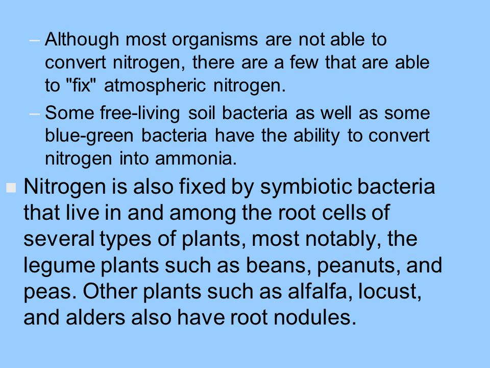 Although most organisms are not able to convert nitrogen, there are a few that are able to fix atmospheric nitrogen.