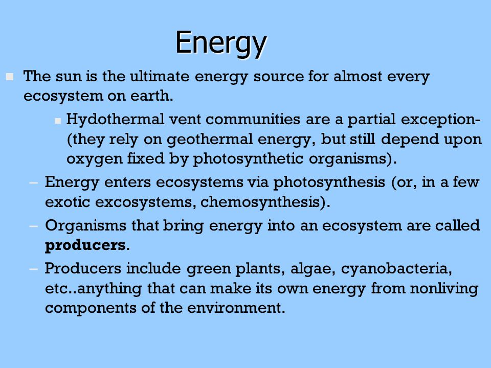 The sun is the ultimate energy source for almost every ecosystem on earth.