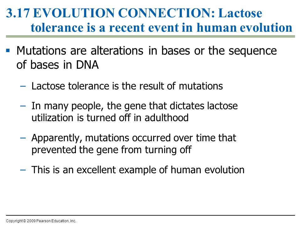 3.17 EVOLUTION CONNECTION: Lactose tolerance is a recent event in human evolution