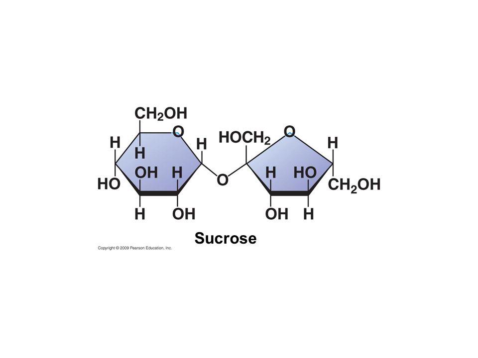 Sucrose