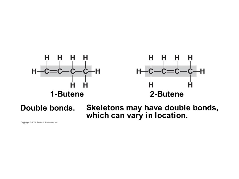 Skeletons may have double bonds, which can vary in location.