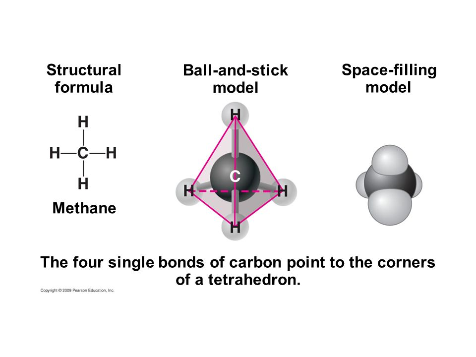 The four single bonds of carbon point to the corners
