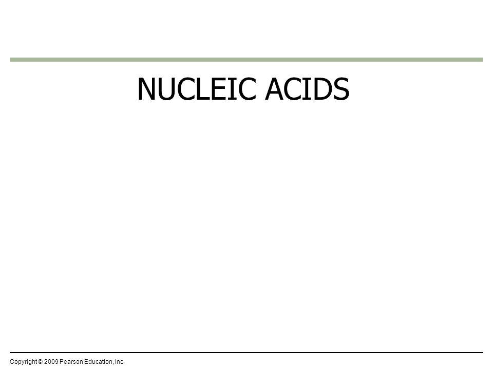 NUCLEIC ACIDS Copyright © 2009 Pearson Education, Inc.