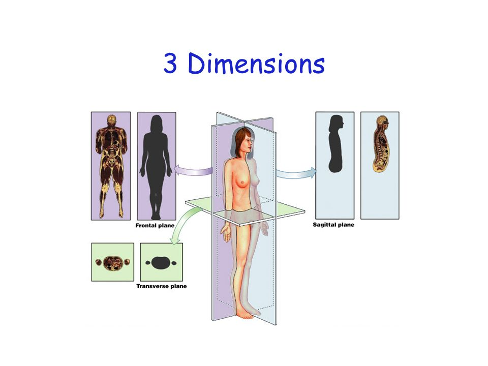 3 Dimensions Figure 1–9