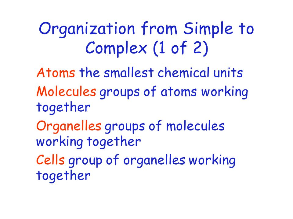 Organization from Simple to Complex (1 of 2)
