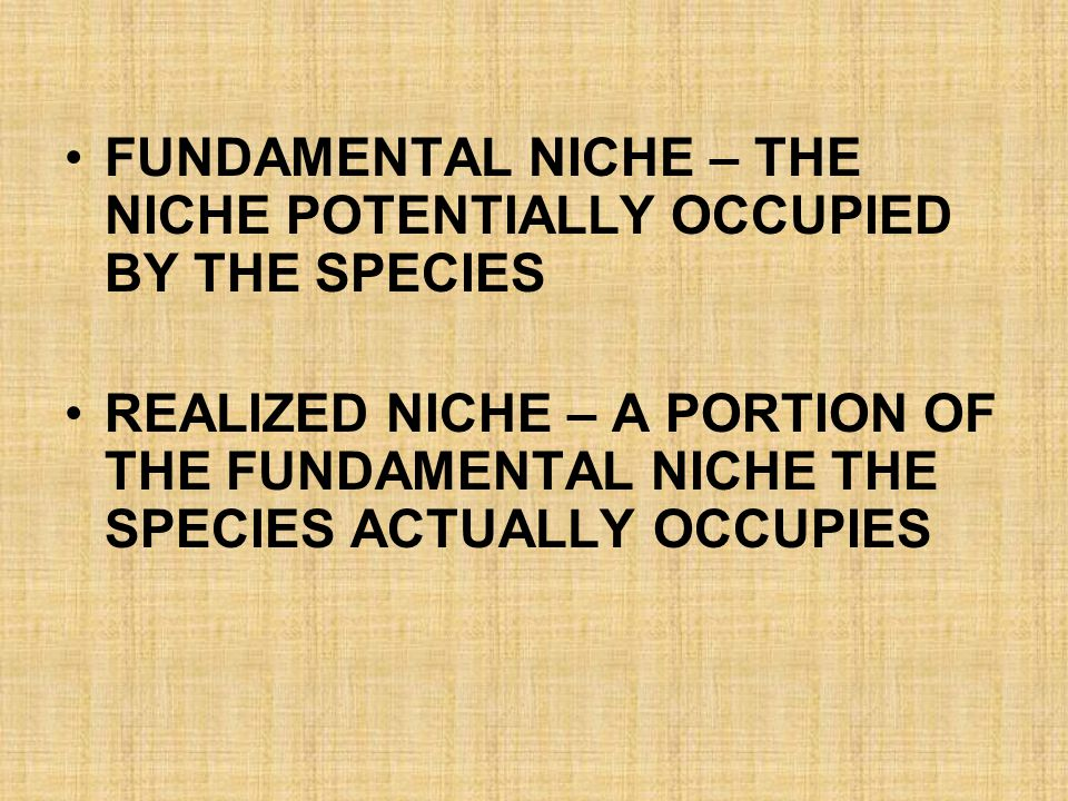 FUNDAMENTAL NICHE – THE NICHE POTENTIALLY OCCUPIED BY THE SPECIES