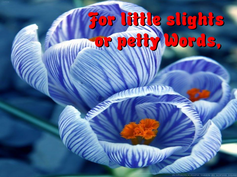 For little slights or petty Words,