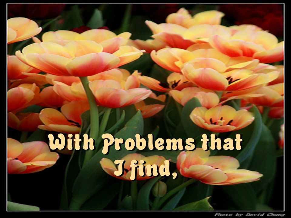 With Problems that I find,