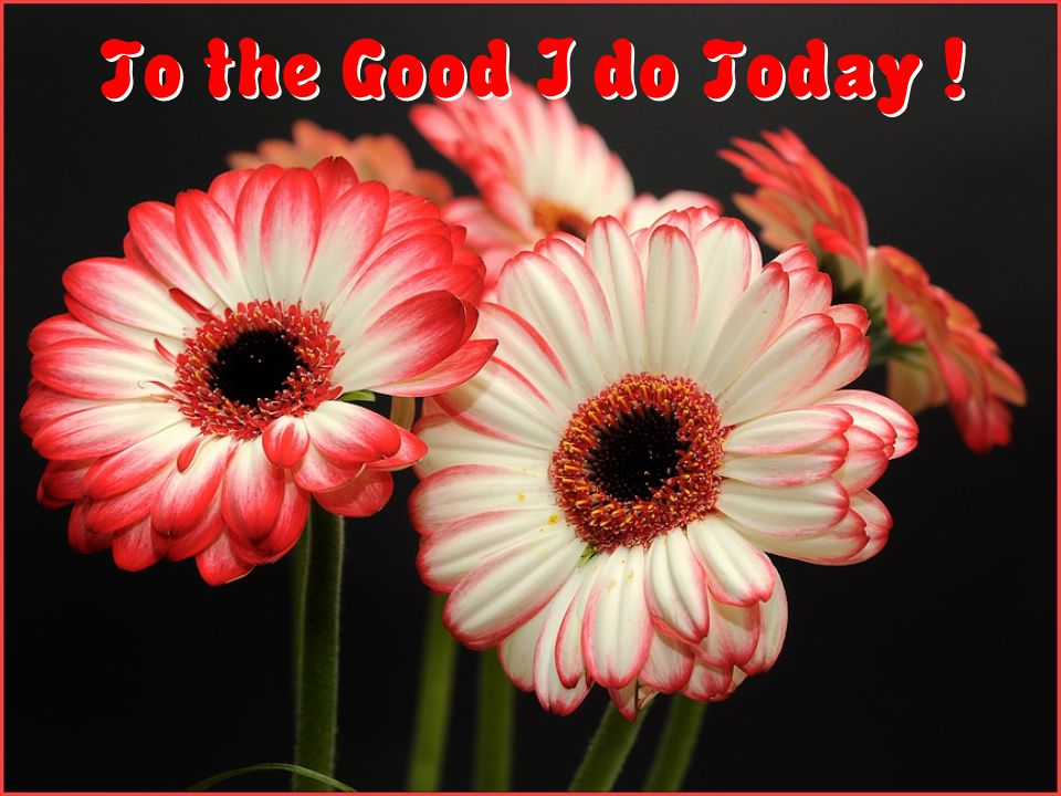 To the Good I do Today !