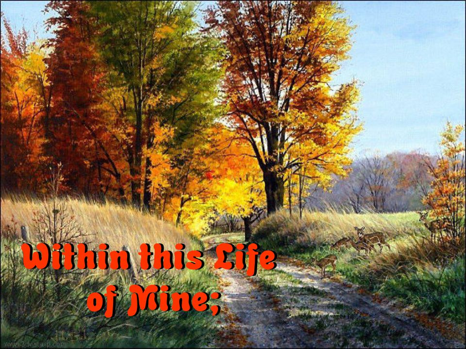 Within this Life of Mine;