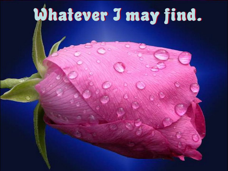 Whatever I may find.