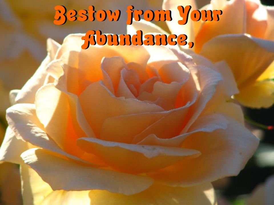 Bestow from Your Abundance,