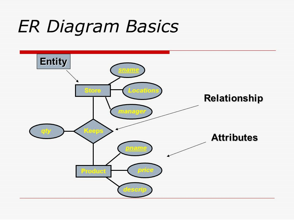 ER Diagram Basics Entity Relationship Attributes Product Keeps Store
