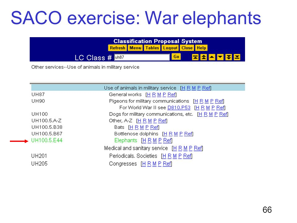 SACO exercise: War elephants