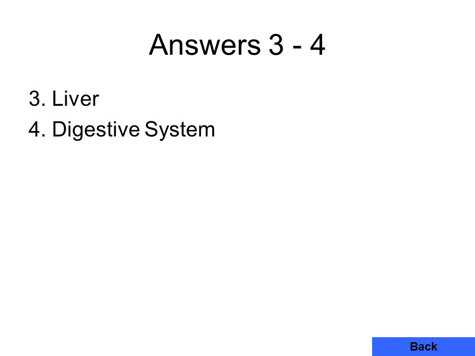 Answers 3 - 4 3. Liver 4. Digestive System Back