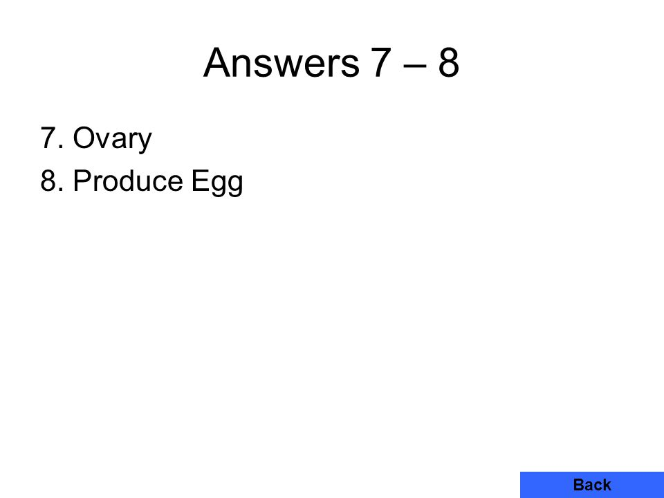 Answers 7 – 8 7. Ovary 8. Produce Egg Back