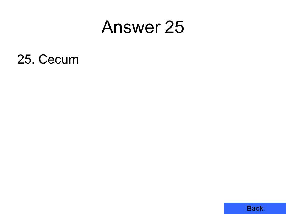 Answer 25 25. Cecum Back