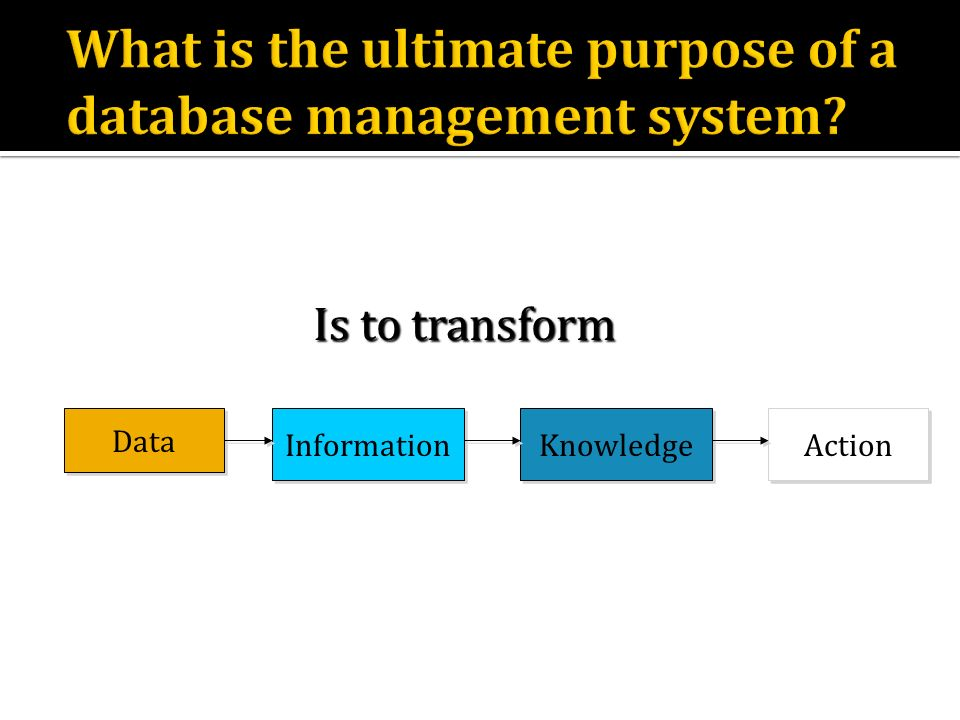 What is the ultimate purpose of a database management system