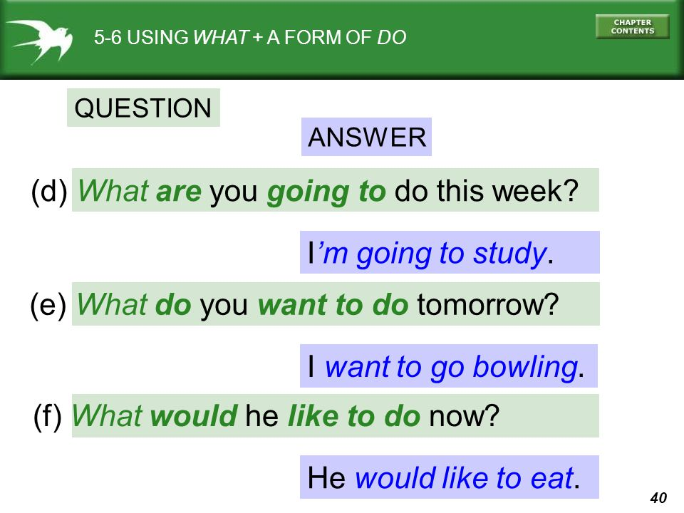(d) What are you going to do this week