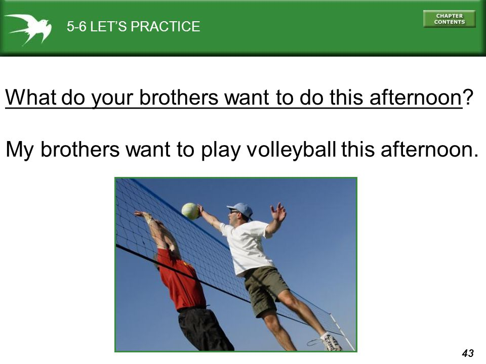 What do your brothers want to do this afternoon