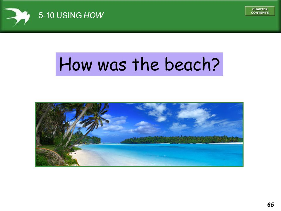 5-10 USING HOW How was the beach