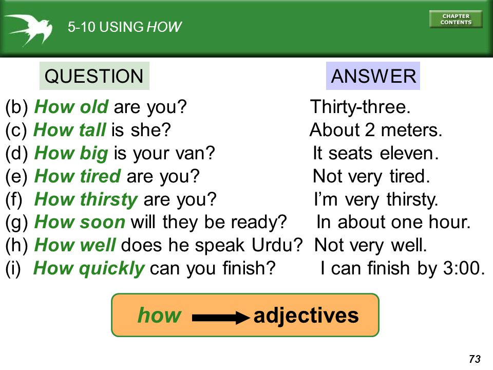 how adjectives QUESTION ANSWER (b) How old are you Thirty-three.