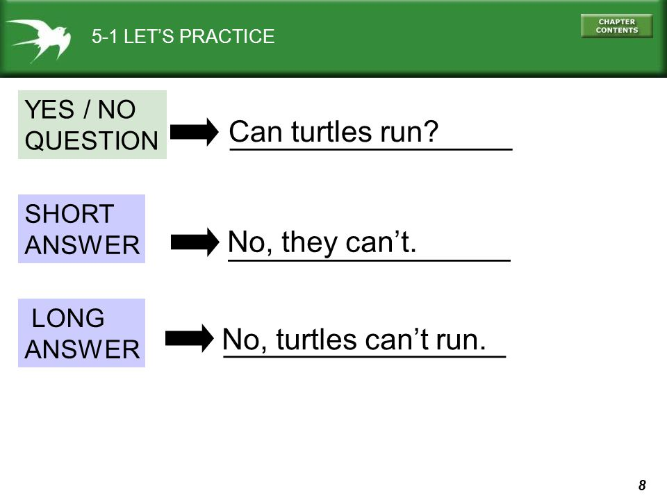 Can turtles run _________________ No, they can't. _________________