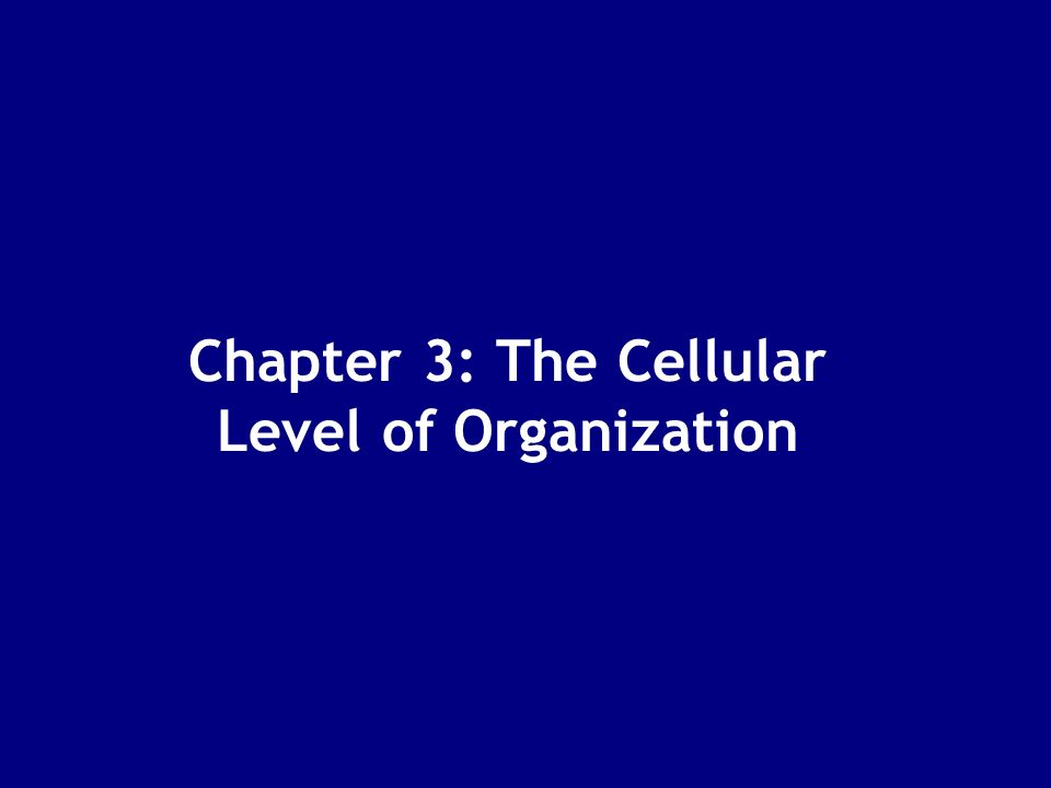 Chapter 3: The Cellular Level of Organization