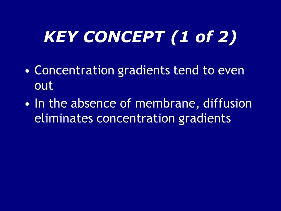 KEY CONCEPT (1 of 2) Concentration gradients tend to even out