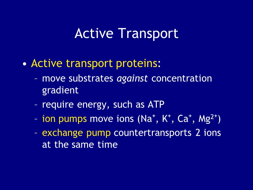 Active Transport Active transport proteins: