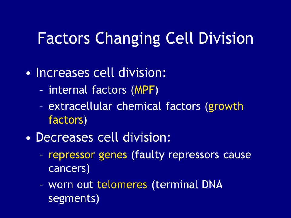 Factors Changing Cell Division