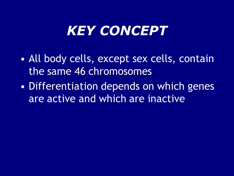 KEY CONCEPT All body cells, except sex cells, contain the same 46 chromosomes.