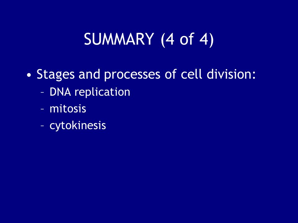 SUMMARY (4 of 4) Stages and processes of cell division: