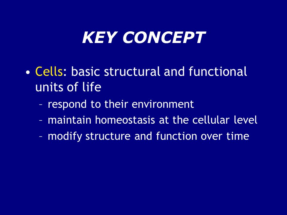 KEY CONCEPT Cells: basic structural and functional units of life
