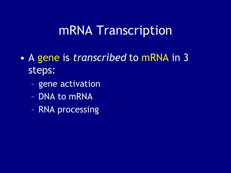 mRNA Transcription A gene is transcribed to mRNA in 3 steps: