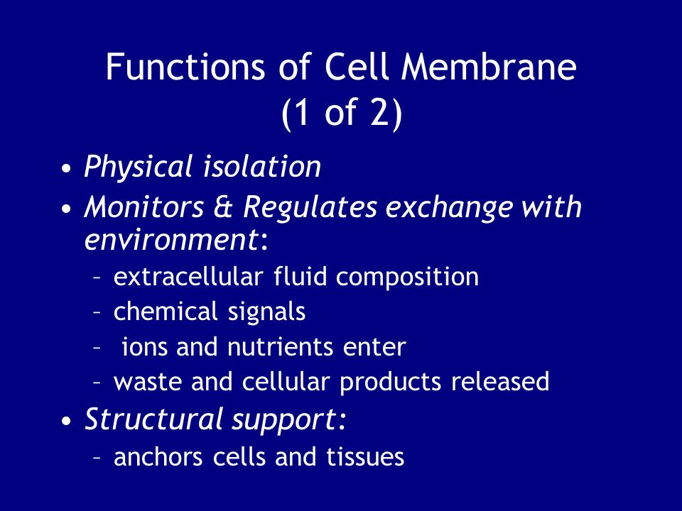 Functions of Cell Membrane (1 of 2)