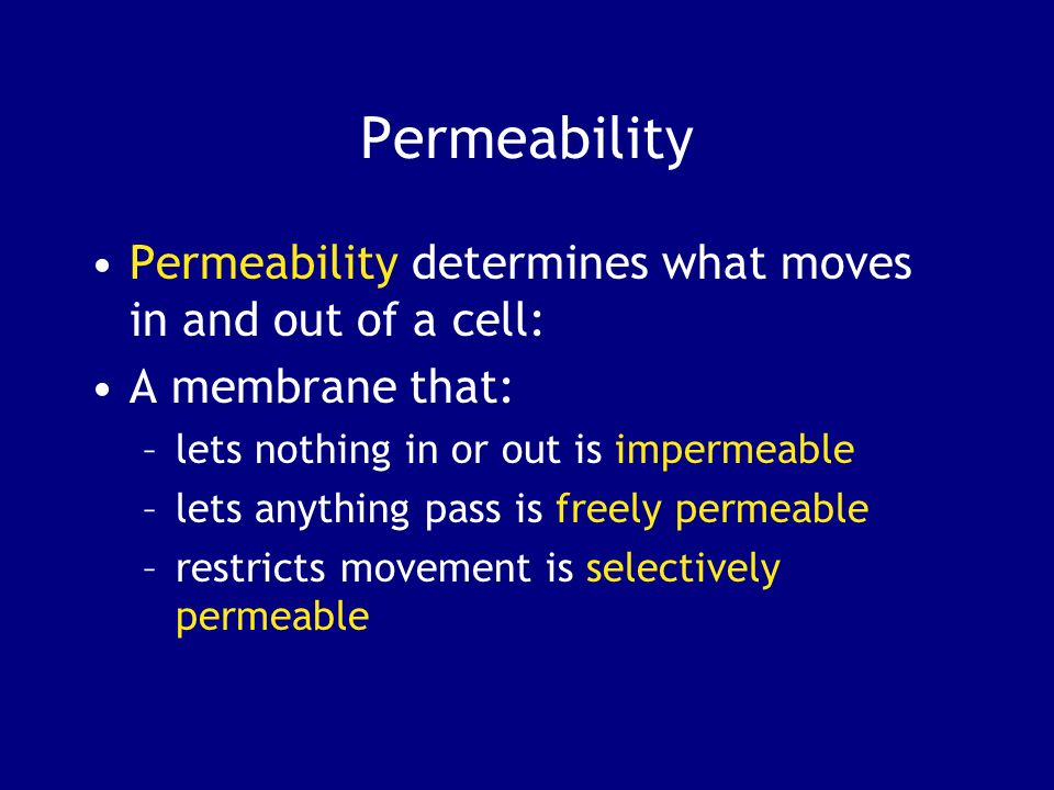 Permeability Permeability determines what moves in and out of a cell: