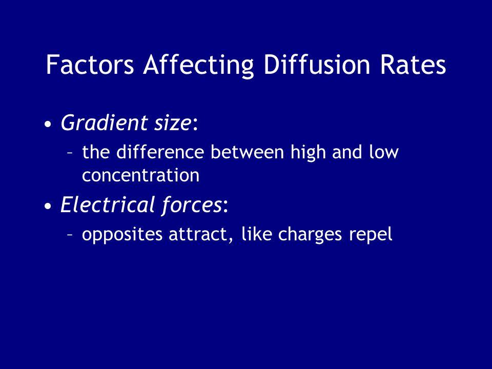 Factors Affecting Diffusion Rates