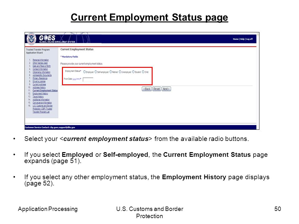 Current Employment Status page