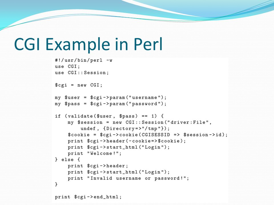 CGI Example in Perl